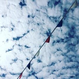 bunting_blue_sky