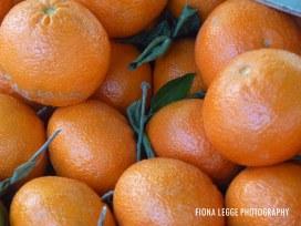 oranges